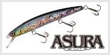 ASURA O.S.P-SP