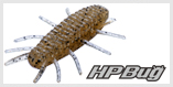 HP Bug